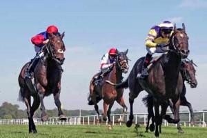 Pferderennen - Die Mutter der Sportwetten